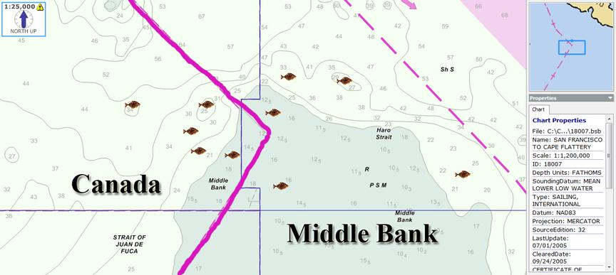 Middlebank3.jpg